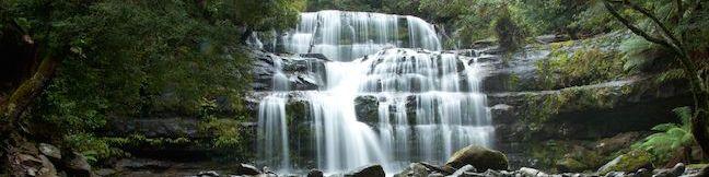 Liffey Falls State Reserve Liffey Falls Nature Walk Liffey Walking Trail Tasmania Australia