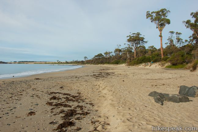 Mayfield Beach Conservation Area Campground | Tasmania | Hikespeak com
