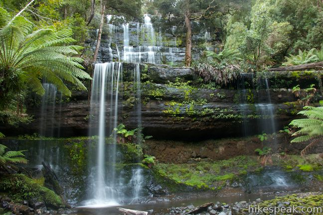 This 1.8 to 2.65-kilometer walk in Mount Field National Park visits one of Tasmania's most famous and beautiful waterfalls.