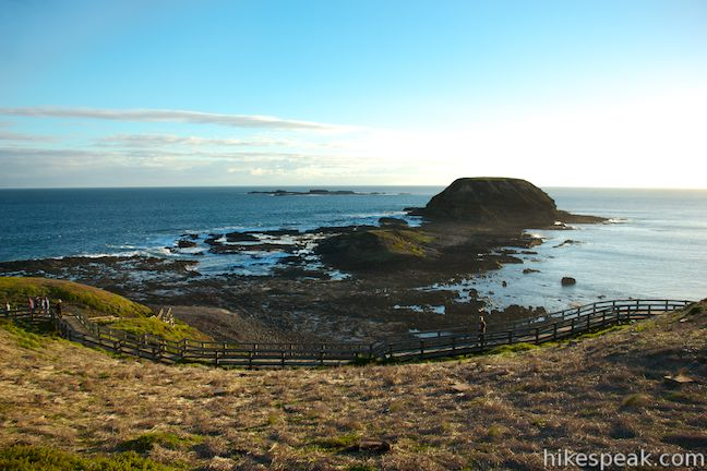 Phillip Island Nobbies