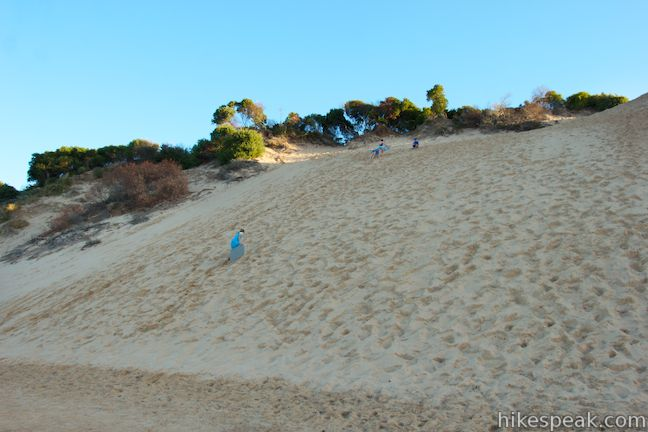Cleeland Bight Dune Sledding