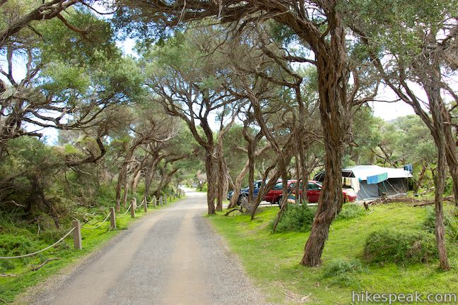 Tidal River Campground Wilsons Promontory National Park