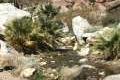 Borrego Palm Canyon Trail Anza-Borrego Desert