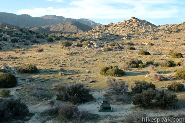 Culp Valley Primitive Campground Anza-Borrego Desert State Park