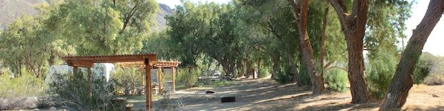Tamarisk Grove Campground in Anza-Borrego Desert State Park camping