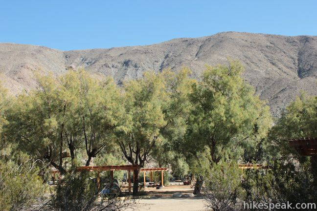 Tamarisk Grove Campground in Anza-Borrego Desert State Park
