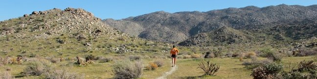 Tubb Canyon Trail to Big Spring in Anza-Borrego Desert State Park hike