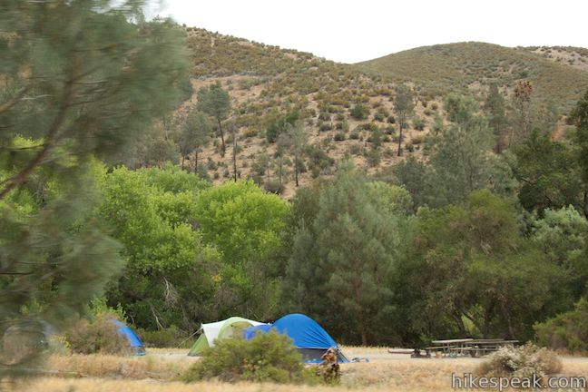 Campground in Pinnacles National Park
