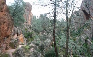 High Peaks Condor Gulch Loop Pinnacles National Park