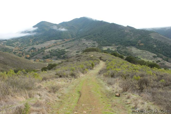 Gaviota Peak above Las Cruces Trail