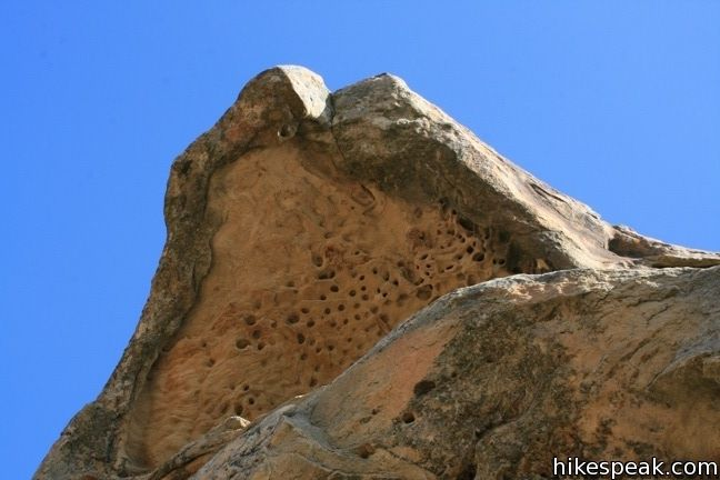 Lizard's Mouth in Los Pardres National Forest