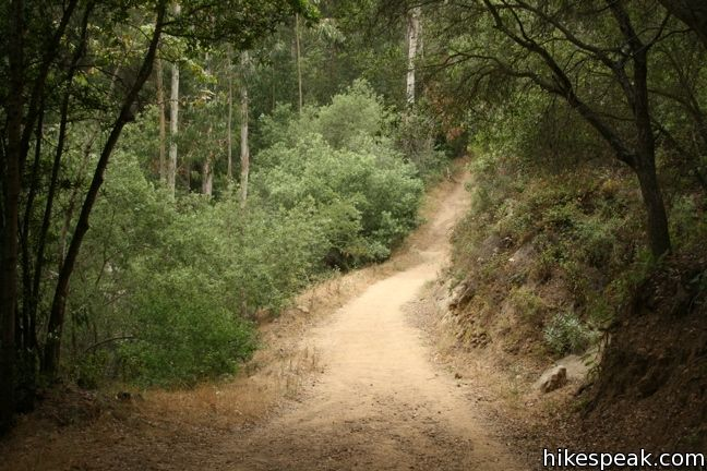 This 3.7-mile hike uses four trails to form a loop to a vista point in the Santa Ynez Mountains behind Montecito.