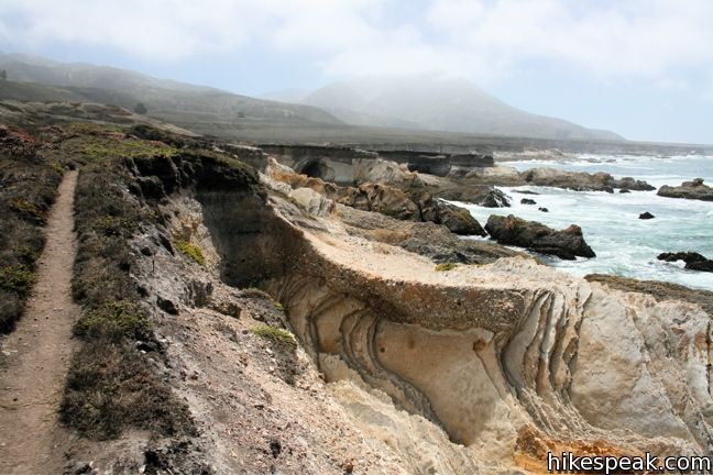 This easy hike explores tide pools, beaches, and impressive cliffs on the picturesque coast of Montaña de Oro State Park.
