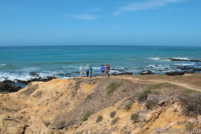 This gradual 4.5-mile lollipop loop in Harmony Headlands State Park crosses a coastal valley to reach picturesque ocean bluffs on the rugged coast between Cayucos and Cambria.