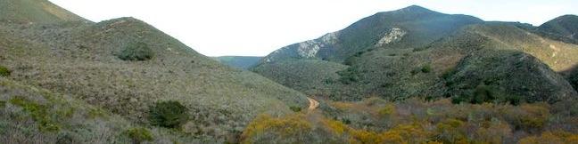 Islay Creek Trail Montaña de Oro State Park hike