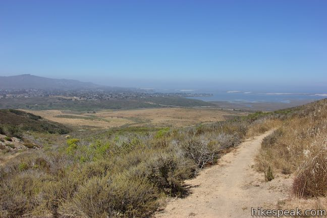 Hutash Trail Morro Bay Los Osos View