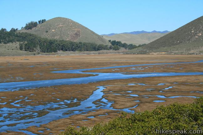 Elfin Forest Natural Preserve Morro Bay