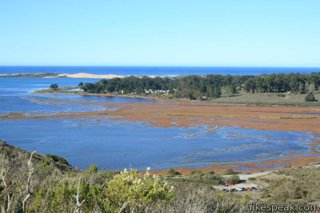 Portola Point in Morro Bay State Park