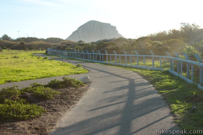 Morro Rock from Cloisters Park