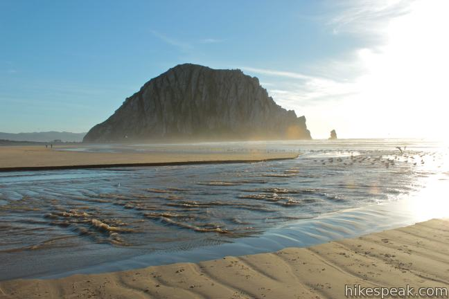 Morro Rock from Morro Strand State Beach