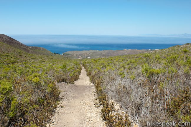 Oats Peak Trail Ocean View
