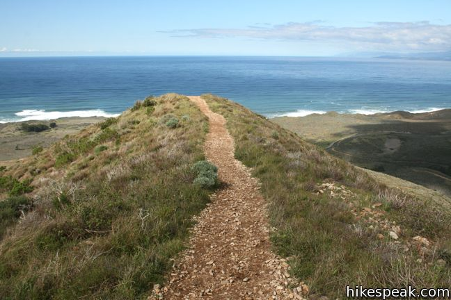 This 3.7-mile hike summits a 1,347-foot peak in Montaña de Oro State Park with panoramic coastal views.