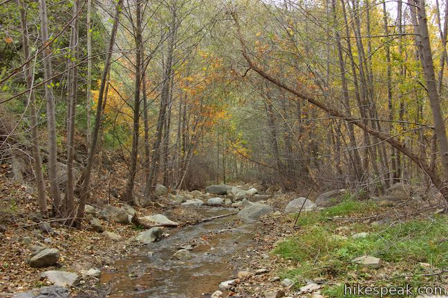 Santa Paula Creek Hike