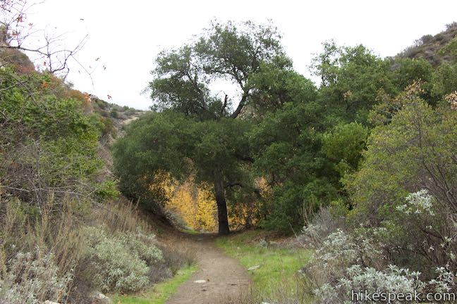 Santa Paula Canyon Trail