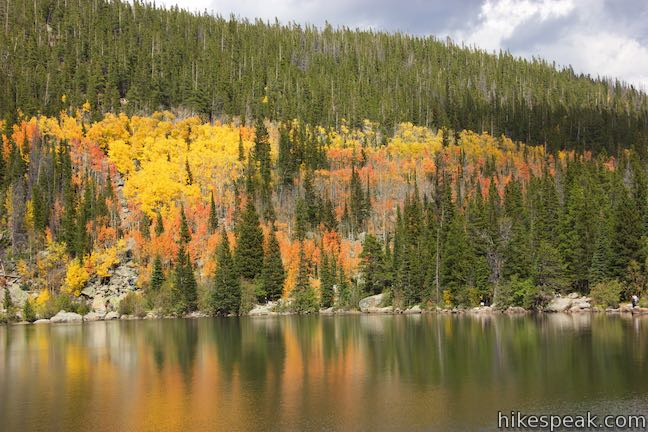 Bear Lake Colorado Aspen Trees