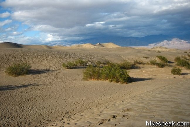 This 1 to 3-mile hike explores the most visible sand dunes in Death Valley National Park.