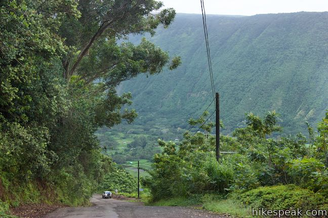 Waipio Valley Road Hawaii