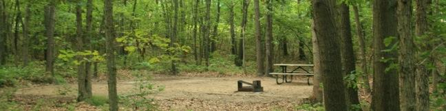 Indiana Dunes National Lakeshore camping Dunewood Campground