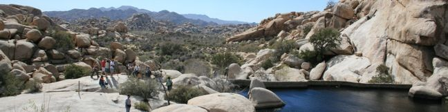 Joshua Tree Barker Dam Hike joshua Tree National Park Trail desert reservoir dam look hike