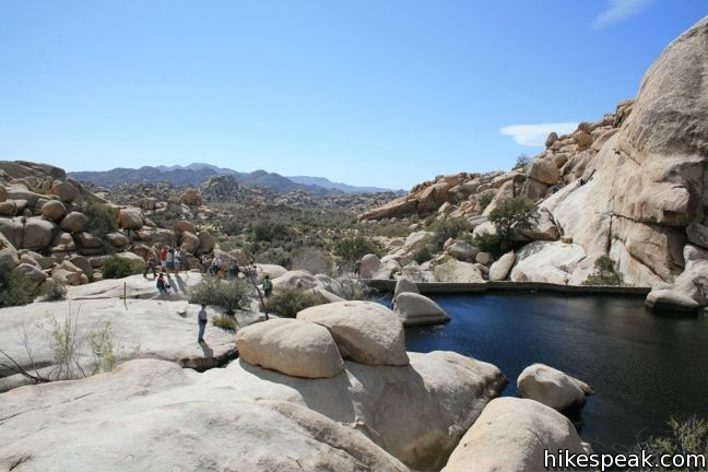 Joshua Tree Lost Barker Dam Trail