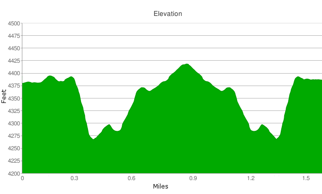 Desert Queen Mine elevation profile