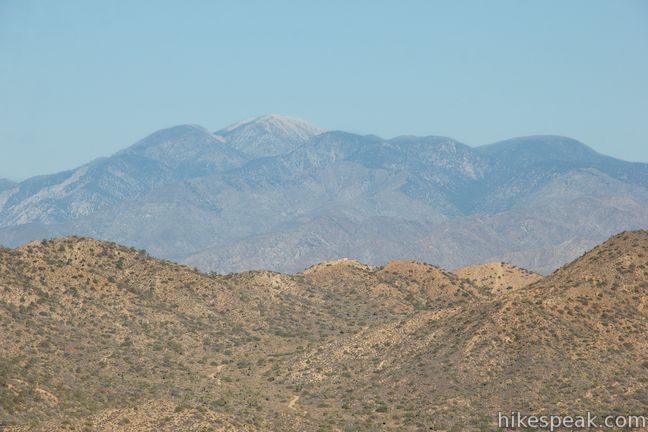 San Gorgonio Mountain from Joshua Tree