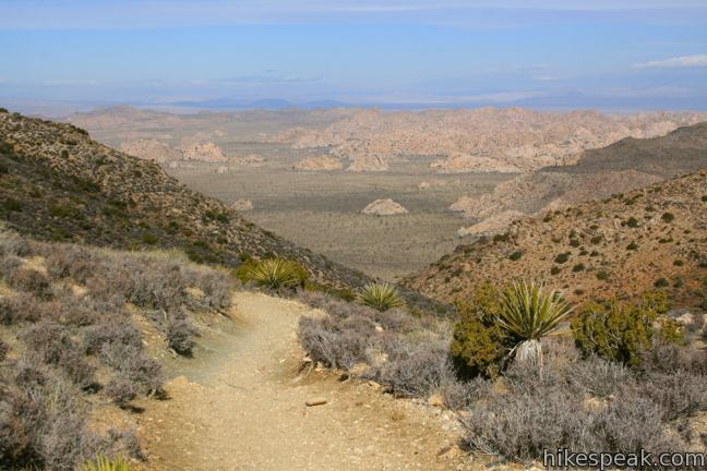 This 3-mile hike offers summit views from the center of Joshua Tree National Park.