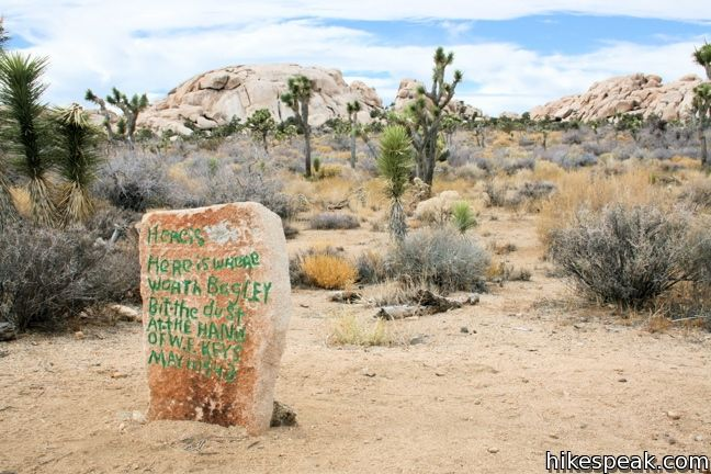 This 1.55 to 2.15 hike visits a well-reserved gold mill, exploring the mining history of Joshua Tree National Park.