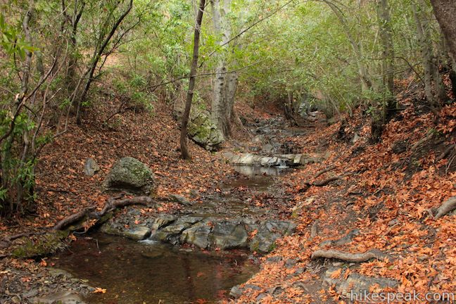 Rose Valley Falls Trail | Ojai | Los Padres | Hikespeak com