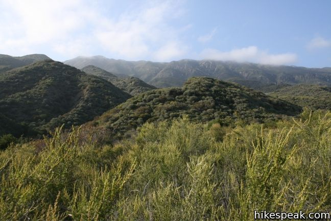 This 0.7-mile loop explores the creek and forest on a nature trail around a 70-site campground in Los Padres National Forest.