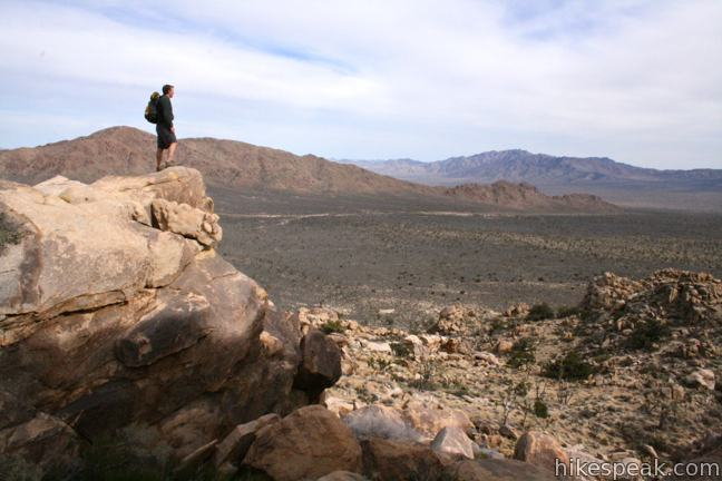 This 3.4 to 4-mile hike in Mojave National Preserve crosses the world's densest Joshua tree forest, passing an abandoned silver mine to reach a rocky summit with views of Cima Dome.