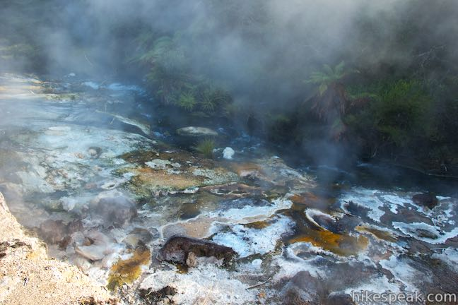 Waimangu Volcanic Valley Hot Springs of Mother Earth