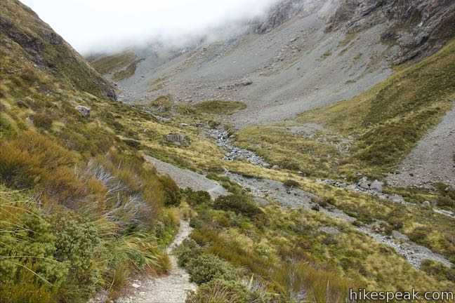 Otira Valley Track