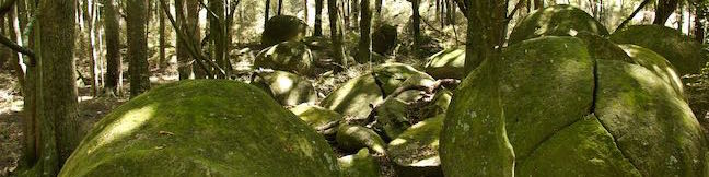 Whitecliffs Boulders Walk Rangitikei River Whitecliffs Farm North Island New Zealand