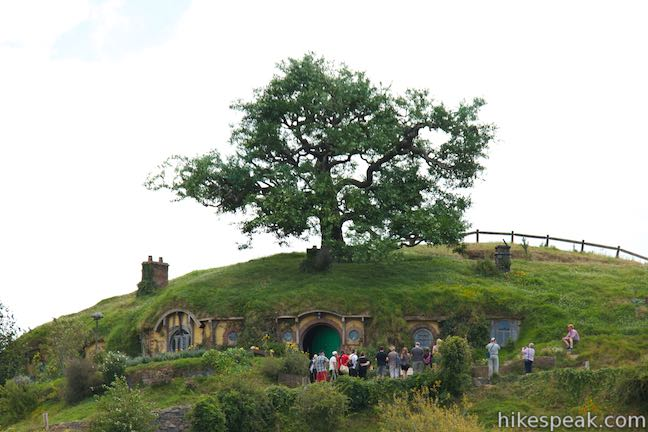 Gandalf's Cutting Hobbiton Bag End