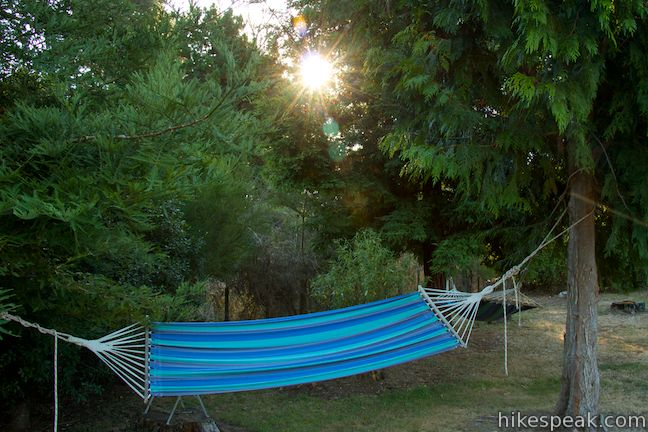 Whakaipo Lodge Hammocks