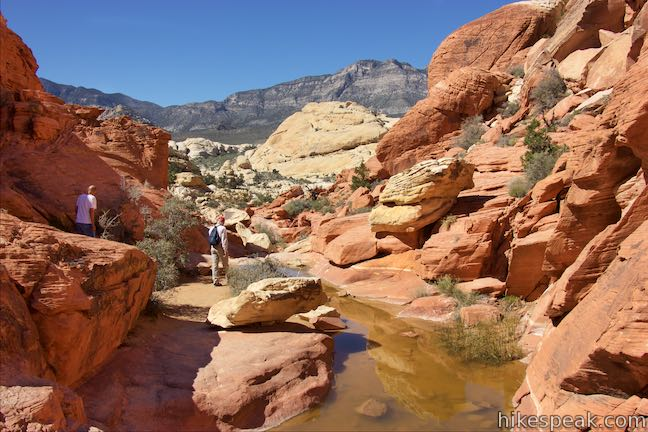 Calico Tanks Trail Pools