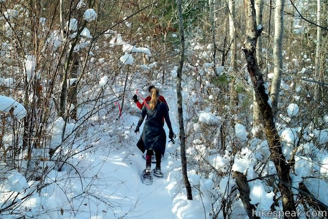Southern Exposure Snowshoe Trail at Beaver Lake Nature Center