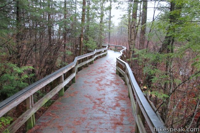 Labrador Hollow Boardwalk