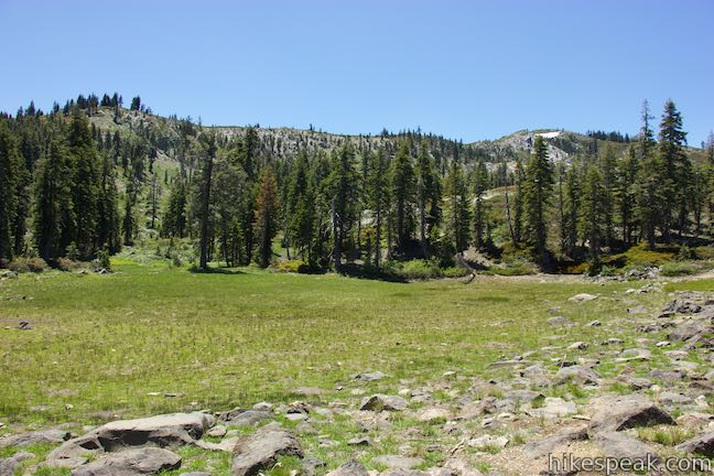 Little Castle Lake Trail Meadow